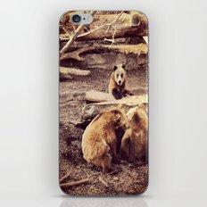 Bear with me... iPhone & iPod Skin