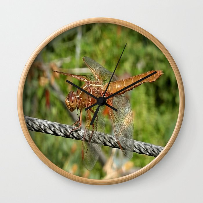 Female Red Skimmer Dragonfly Wall Clock
