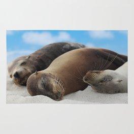 Galapagos Sea lions family sleeping on beach Rug