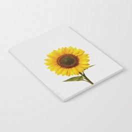 Sunflower Still Life Notebook