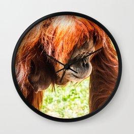 Orangutang Wall Clock