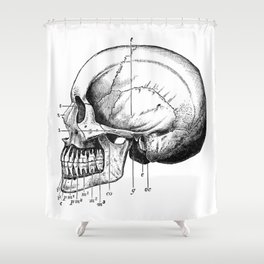 Skull 3 Shower Curtain
