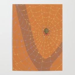 Marbled Orbweaver Spider Poster
