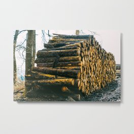 Poltery Site (Wood Storage Area) After Storm Victoria Möhne Forest 4 Metal Print