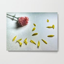 Carnation and Petals Metal Print