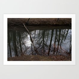 Reflections vs. Reality Art Print