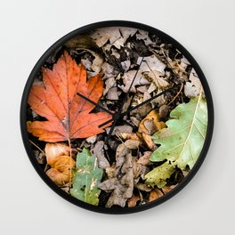 Autumnal leaves on the ground Wall Clock