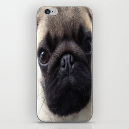 Pug Hi iPhone Skin