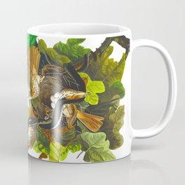 Ferruginous Thrush Bird Coffee Mug