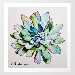 Cacti with pink tipped leaves Art Print