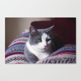 Puss In Boots Canvas Print