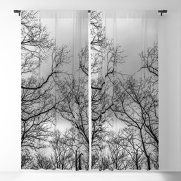 Black and white naked trees silhouette Blackout Curtain