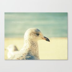 Fly Away... Canvas Print