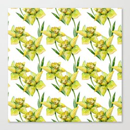 Spring hand painted yellow green watercolor daffodils floral Canvas Print