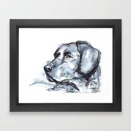 Labrador Retriever Framed Art Print