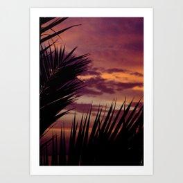 tropical sky Art Print