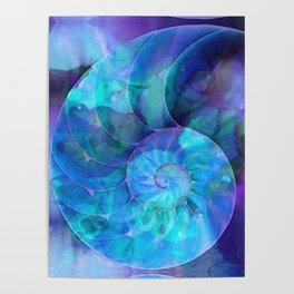 Blue Nautilus Shell - Nature's Perfection by Sharon Cummings Poster