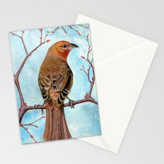 Hepatic Tanager Stationery Cards