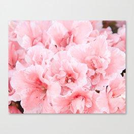 Pink Azalea Flower Dream #2 #floral #decor #art #society6 Canvas Print