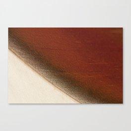 Detail of 1 feather of Shellduck  detail veer bergeend Canvas Print