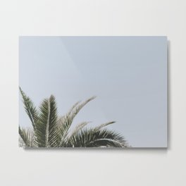 palm tree vi Metal Print