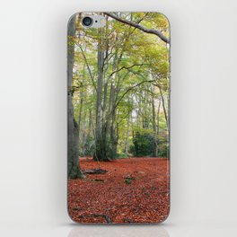 Walking Through Epping Forest iPhone Skin