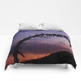 Ruffled Comforters