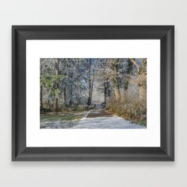 Enchanted Winter Forest Framed Art Print