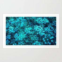 Blue-Green Compound Flower Art Print