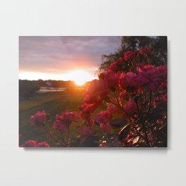 sunset #46 Metal Print