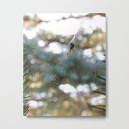 orb weaver spider in autumn bokeh Metal Print