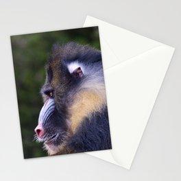 Big Mandrill Stationery Cards