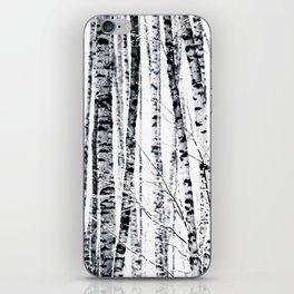 Birch Trees In Winter iPhone Skin