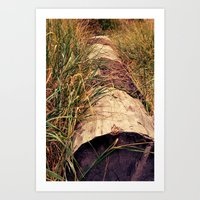 tucked away Art Print