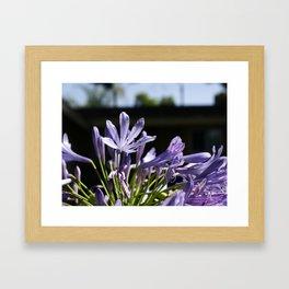 Flowers_1 Framed Art Print