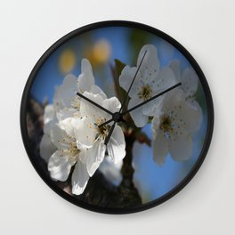 Close Up Of White Cherry Blossom Flowers Wall Clock