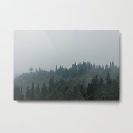 Western Mountain Forest Preserve Metal Print