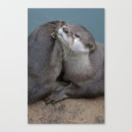 Big Hugs Canvas Print