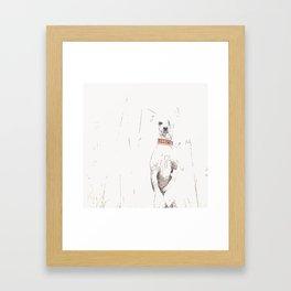 Chinese crested 25 Framed Art Print