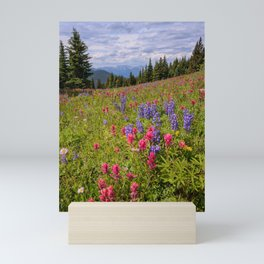SHRINE RIDGE COLORADO SUMMER MOUNTAIN WILDFLOWERS LANDSCAPE PHOTOGRAPHY Mini Art Print