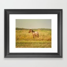 0807 Framed Art Print