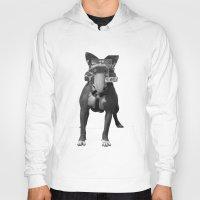 bulldog Hoodies featuring bulldog by Panic Junkie