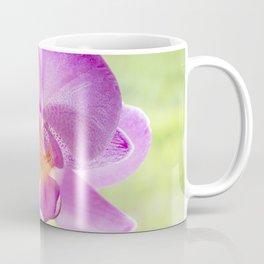 Backlit Iris Coffee Mug