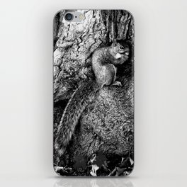 The Squirrel and the Tree King iPhone Skin