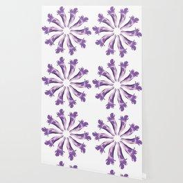 Jacaranda´s Flowers Wallpaper