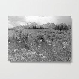 Grand Teton National Park - Wyoming Metal Print