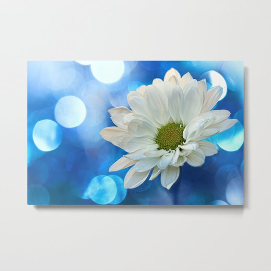 White Daisy on Blue Metal Print