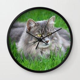 Persian cat in the grass Wall Clock