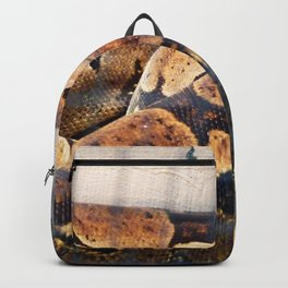 Sleeping Snake Backpack