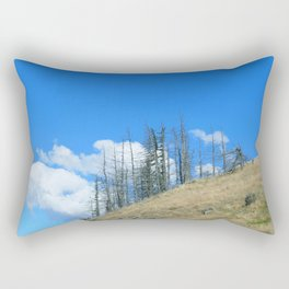 At The End Of The World Rectangular Pillow